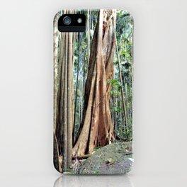 Curtis Falls Rainforest iPhone Case