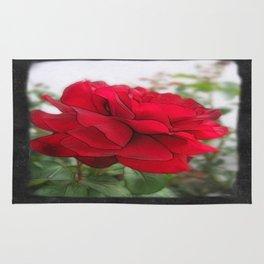 Red Rose Edges Blank P4F0 Rug