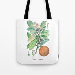 Citrus x Sinensis Tote Bag