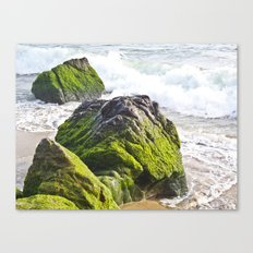 Sublime Slime Canvas Print
