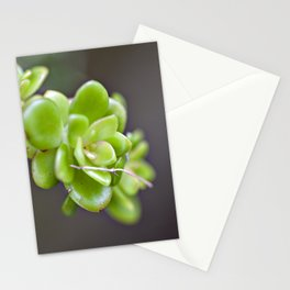 Natur ART  Stationery Cards