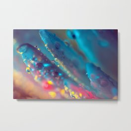 Electric Blue Floral Dew   Metal Print