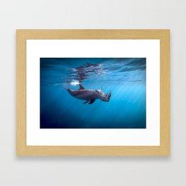 Searhino Framed Art Print