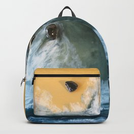 Garry Point - Original Resin Painting Backpack
