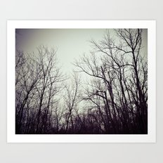 Tree branches in the sky Art Print
