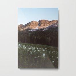 Albion Basin Sunset Metal Print