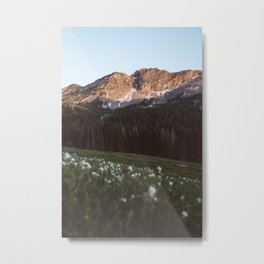 Albion Basin Sunset Metal Print