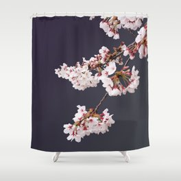 Cherry Blossoms (illustration) Shower Curtain