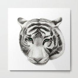 White tiger portrait Metal Print
