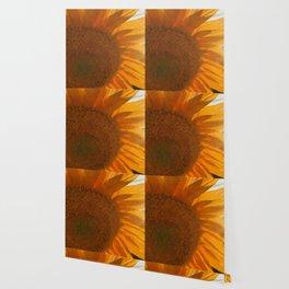 sun love Wallpaper