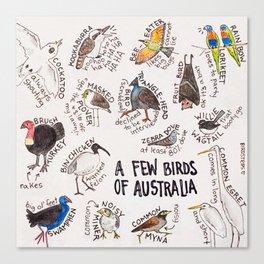 Bird no. 153: A Few Birds of Australia Canvas Print