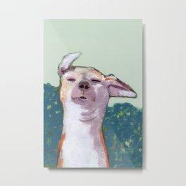 Dog in Wind Metal Print