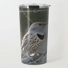 Red-shafted Northern Flicker Travel Mug
