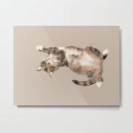 Trusting cat Metal Print