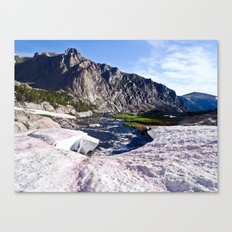 Glacier Walk Canvas Print