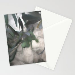 All Olived Up Stationery Cards