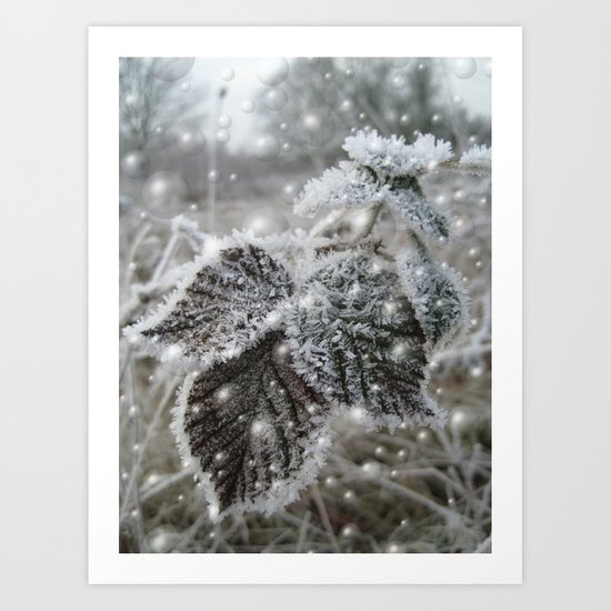 Ice cold beauty Art Print