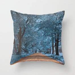 Wye Island Sapphire Road Throw Pillow