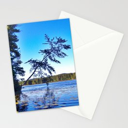 Crooked Tree on Moose Pond in Maine Stationery Cards