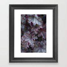 Purple Leaves Framed Art Print