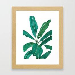 banana leaf watercolor Framed Art Print