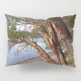 MADRONA TREES EAST END OF CRESCENT BEACH Pillow Sham