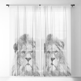 Black and white lion animal portrait Sheer Curtain