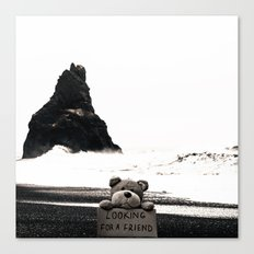 Teddy Looking for a Friend Canvas Print