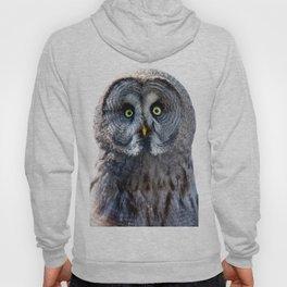 Big Moon Owl Hoody