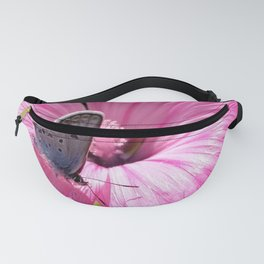 Butterfly on pink picnic Fanny Pack