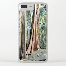 Curtis Falls Rainforest Clear iPhone Case