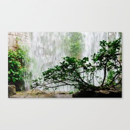 Under the Waterfall Canvas Print