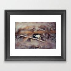 Chickadee Framed Art Print