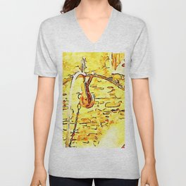 Pieve di Tho: water well Unisex V-Neck