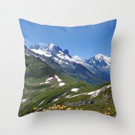 mountains snow peaks sky grass flowers Throw Pillow