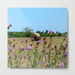 Hay Field Metal Print