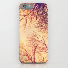 High up in the trees Slim Case iPhone 6s