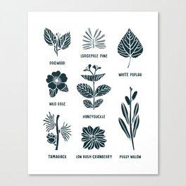 Shrubs & Trees // White & Navy Canvas Print