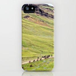 Iceland I iPhone Case
