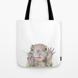 Rainbow Squirrel Tote Bag