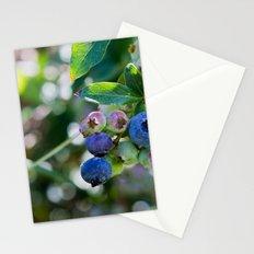 Blueberry Farm Stationery Cards