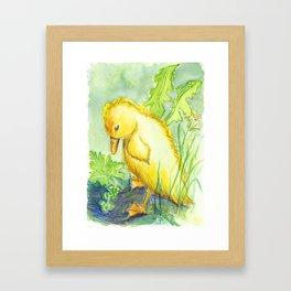 Trauriges Entchen,sad Duckling. Framed Art Print