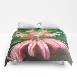 Australia flower Comforters