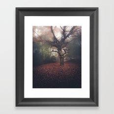 Gentle November Framed Art Print