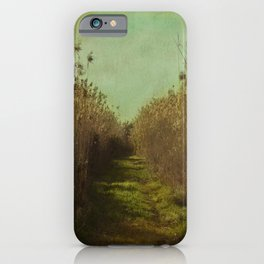 The path into the unknown iPhone Case