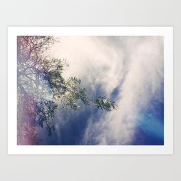 Month of May Art Print