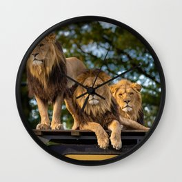 Lion Kings of the Serengeti, Africa Wall Clock