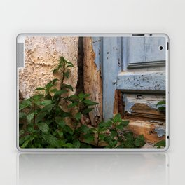 025 Laptop & iPad Skin