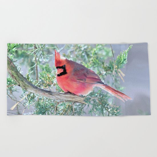 Cold Winter's Day Cardinal Beach Towel