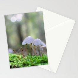 Macro World Stationery Cards